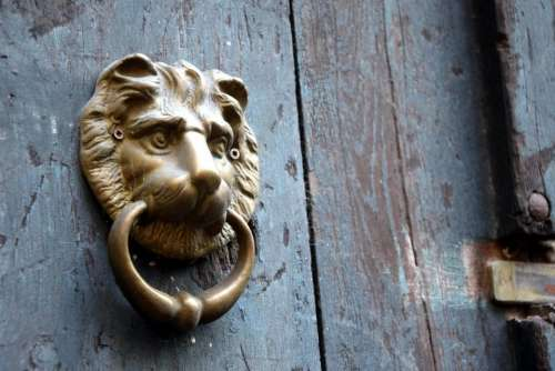 doorknocker lion brass door lions