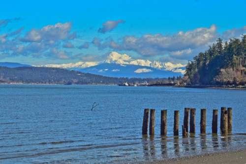 Mt Baker snowy mountains snow capped ocean pilings