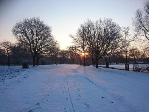 snow winter sunrise London nature