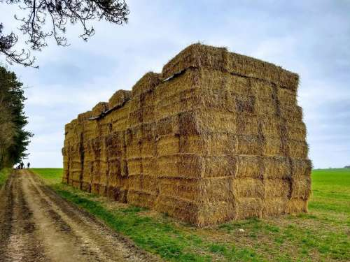 bales stack hay wall agriculture
