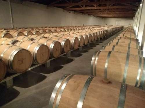 Wine barrels vineyard france burgundy