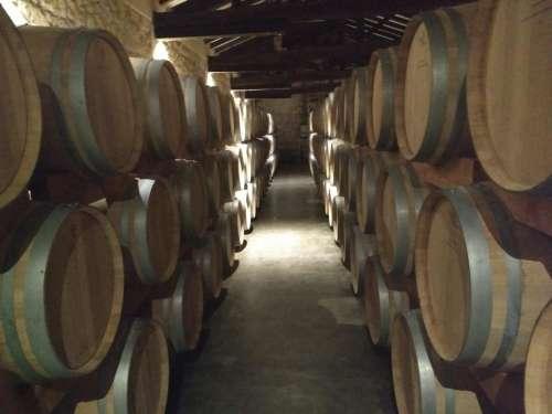 Wine vineyard cuves ves steel wood