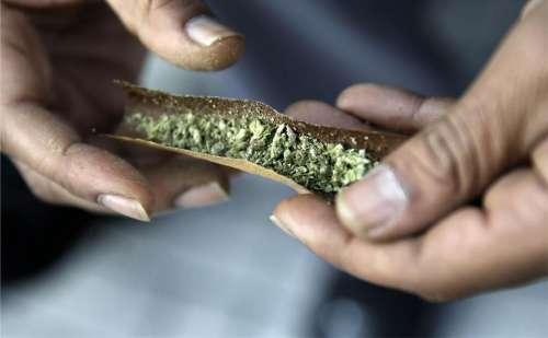 marijuana joint marijuana cigarette
