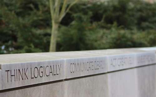 think thought thinking logic rational