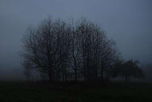 mist misty fog foggy dusk