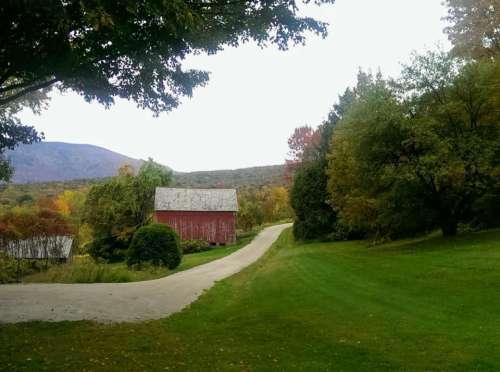 Color leaves Vermont Danby road