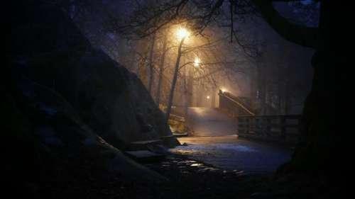 Walkway nighttime surreal spooky path