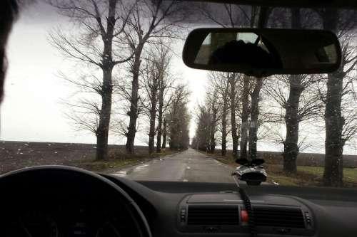 Road winter rain driving trees