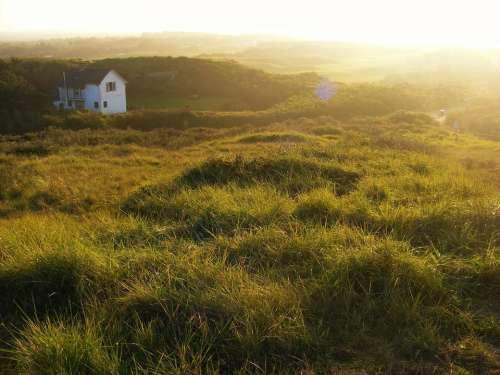 grass field green house sunset