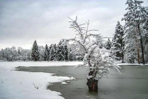 lake ice winter snow nature