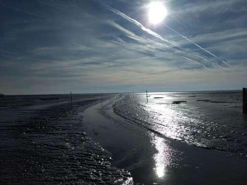 Sun tides out dark mud mudflats