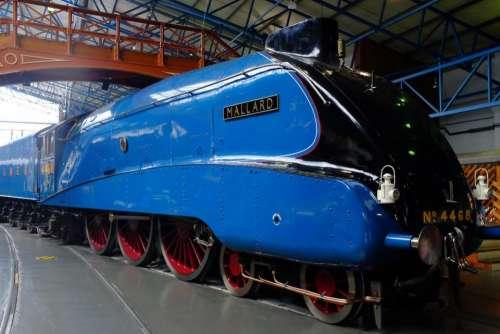 train trains steam mallard world