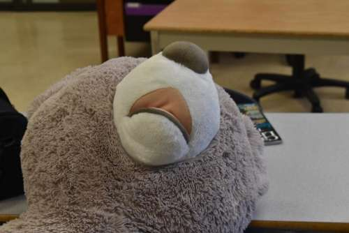 Teddy bear sad depressed give up tired