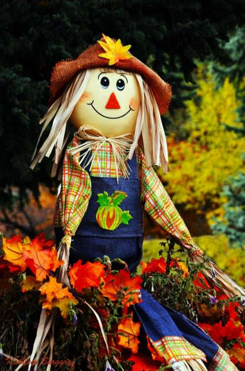 Scarecrow Autumn