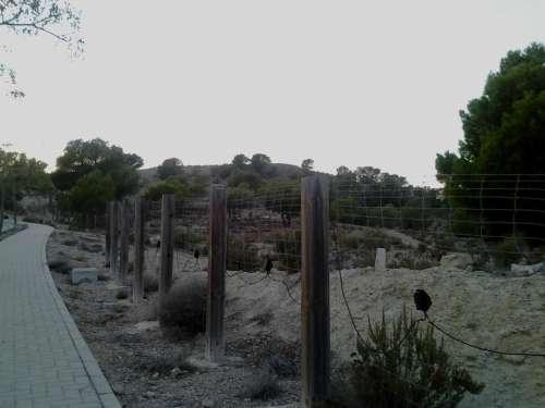 border limit security fences fence