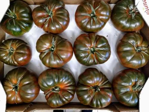 green tomatoes box Symmetry