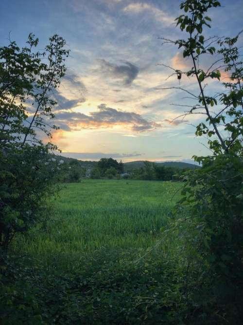fields rural country scenery landscape