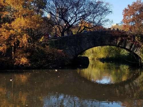 Central Park Autumn New York City travel NYC