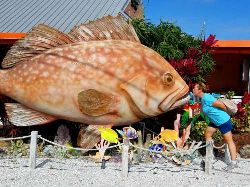 giant fish humor kiss display