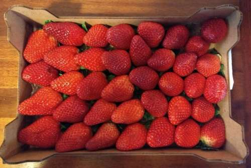 strawberries strawberry box punnet basket