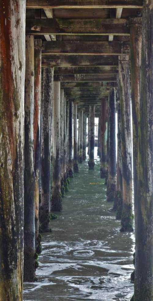 pier pilings ocean