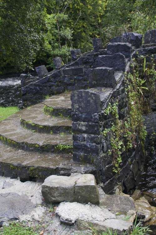 Stone Steps Bridge Stone Bridge Moss Ireland