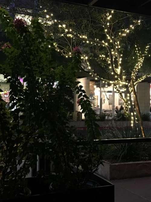 night lights nightscape city cityscape