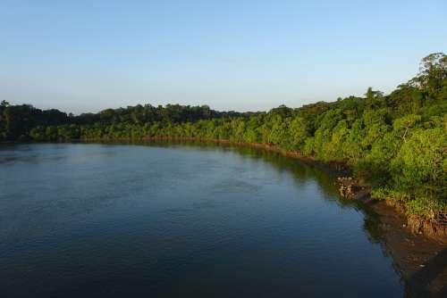 Austen Strait Andaman Flora Vegetation Sea Island