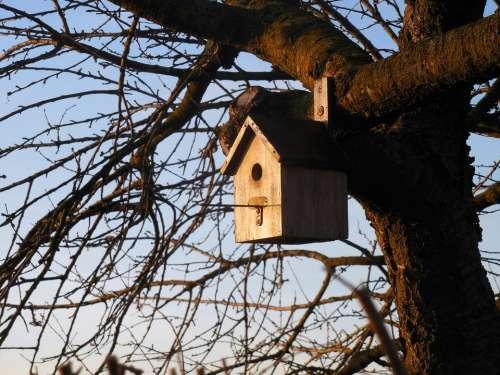 Aviary Bird House Tree Garden Nesting Box Nest