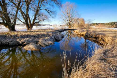 Bach Winter Creek Wintry Nature Landscape Water