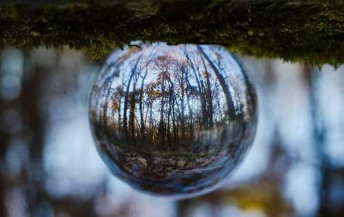 Ball Spherical Photography Evening Evening Walk
