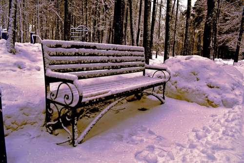 Bench Winter Snow White Nature Shop Trees