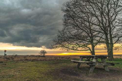 Bench Nature Green Landscape Sunset Sky Outdoors