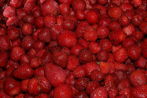 Berry Strawberry Fruit Nutrition Sweet Red