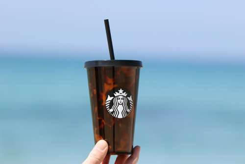 Beverage Coffee Starbucks Ice Coffee Morning