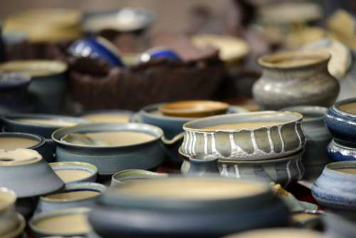 Bonsai Pot Bonsai Shell Shells Hand Labor Sound
