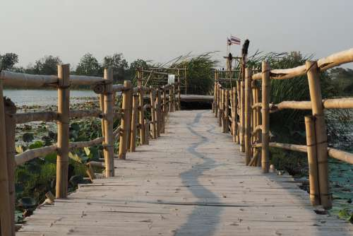 Bridge Swamp Nature Marsh The Landscape