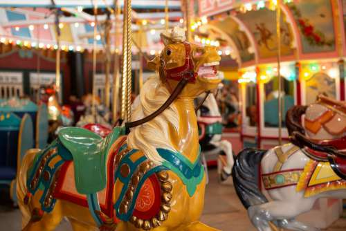 Carousel Horse Amusement Ride Colorful Fun