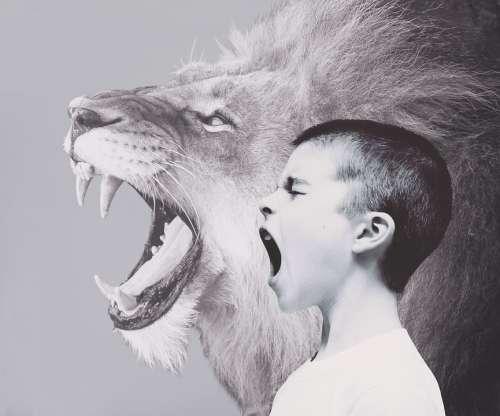 Child Boy Lion Predator Roar Scream Friendship
