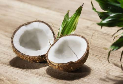 Coconut Shell Nuts Food Healthy Natural Eat