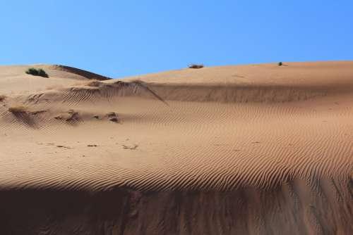 Desert Sand Dune Dry Nature Travel