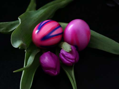 Easter Easter Eggs Colorful Colored Egg Spring