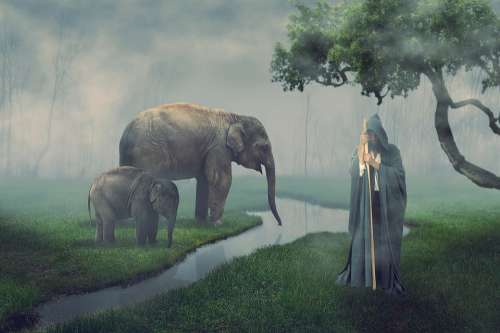 Elephant Guard Man Landscape Nature Photomontage