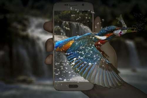 Fantasy Kingfisher Phone Telephone Waterfall Fish
