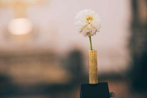 Flower Wedding Romantic Bouquet Church Garnish