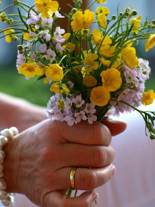 Flowers Hand Ring Married Springtime