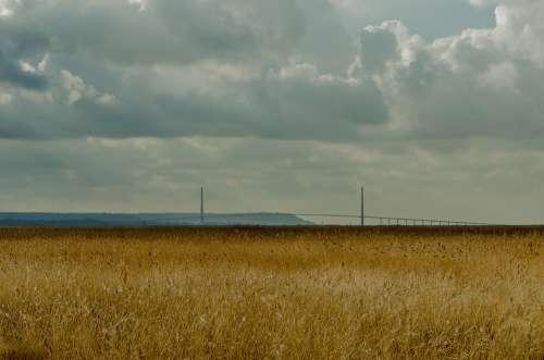 France Landscape Reed Bed Reed Estuary Normandy