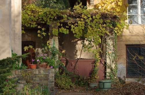 Garden Autumn Pergola Building Mood Evening Sun