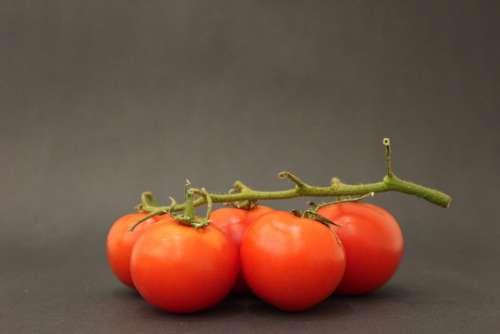 Green Handle Tomato Tomatoes Plant Leaves Ot