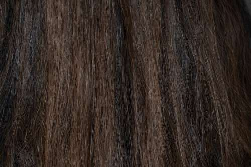 Hair Dark Brown Dark Brown Female Human Hair
